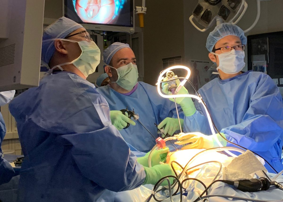 Fetal Treatment Center such as UCSF brings together specialists in pediatric surgery, genetics, obstetrics/perinatology, radiology, nursing, and neonatal medicine